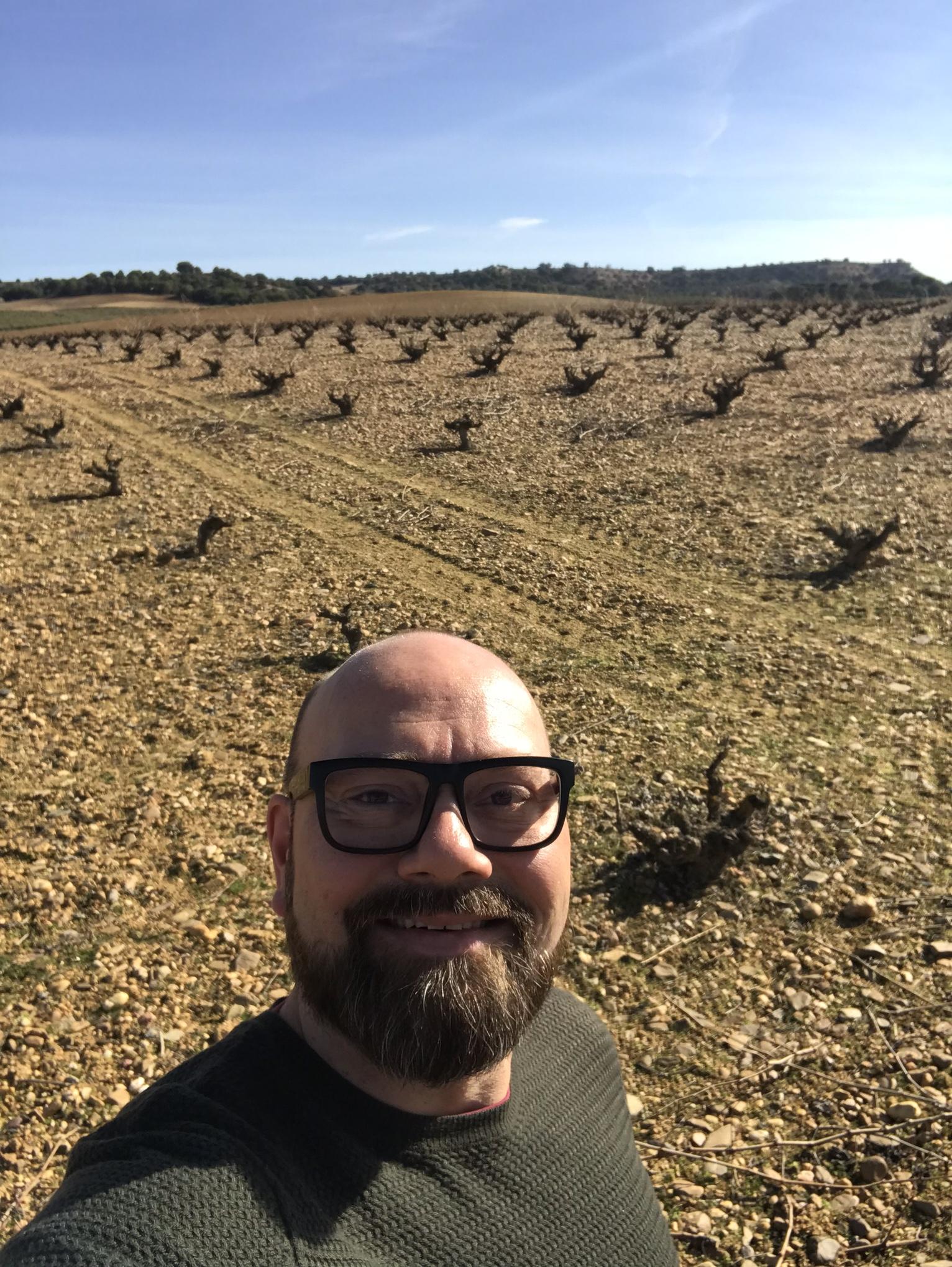 I boldly head into the Spanish Heartland: Toro!