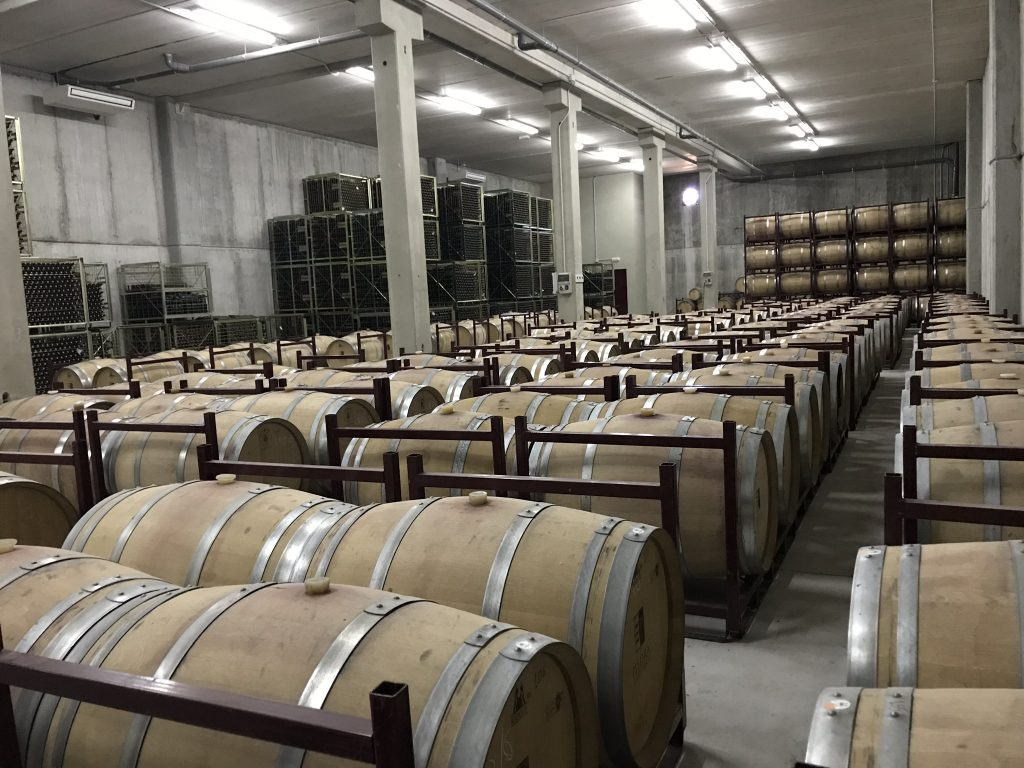 Oak Barrels at Estancia Piedra with Chris Grenness